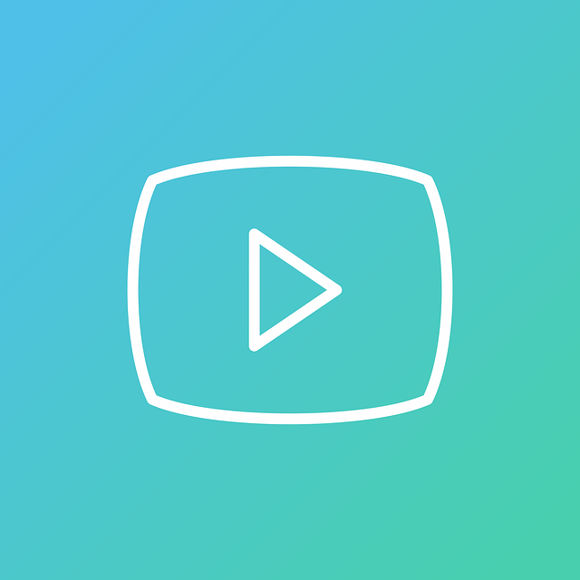 play video project management
